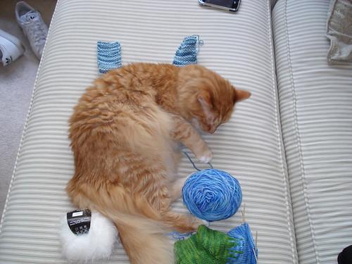 Sleepy Assistant