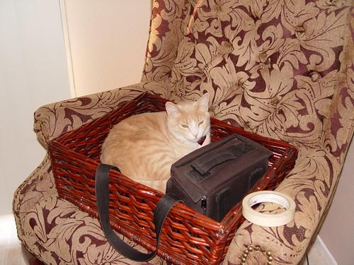 Nutmeg in a basket.