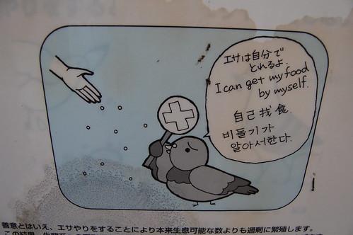 cartel sign japanesesign