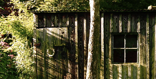 Norman's old shed 1