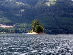 Cute Island