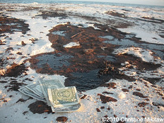 BP OIL SPILL Disaster