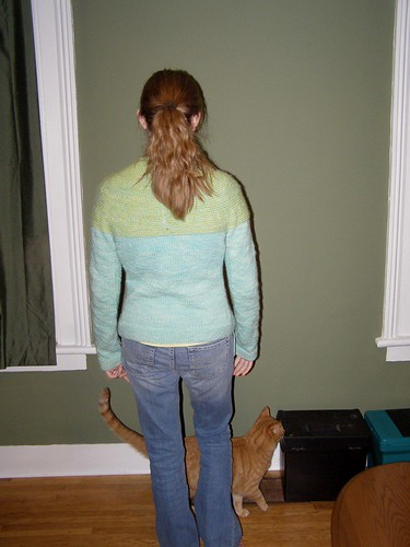 Back view (with cat)