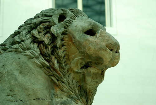 The lion at the British Museum