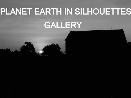 PLANET EARTH IN SILHOUETTES is our featured group of the month. Showcase galleries on display in PLANET EARTH NEWSLETTER. New updates ck. out these amazing photos.