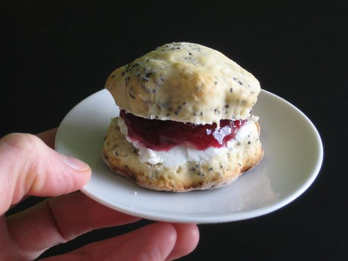 Poppy Seed Scone with Rasberry Jelly & Buttermilk Curd