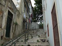Trapper i Lisboa