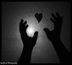 I let my heart go away