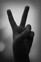 Peace... PLEASE