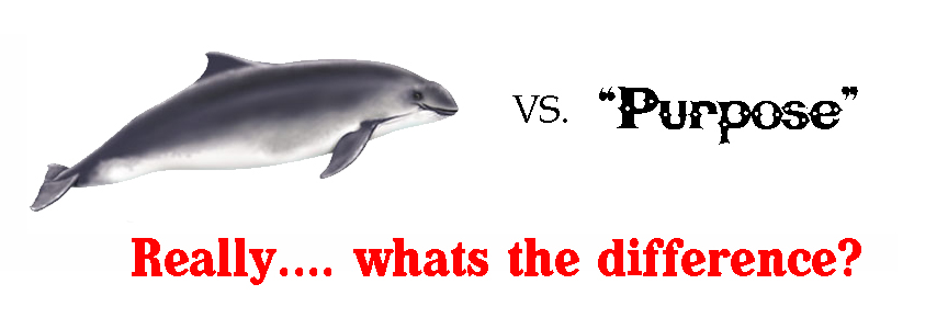 porpoise vs purpose