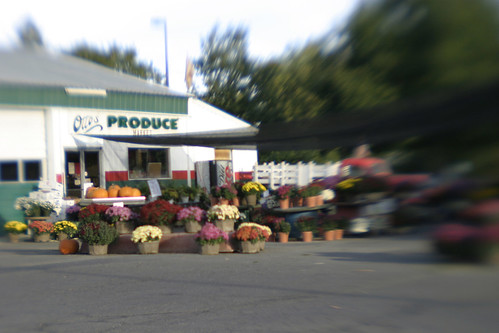 The local produce market.