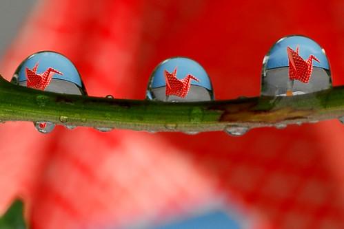 paper crane drops