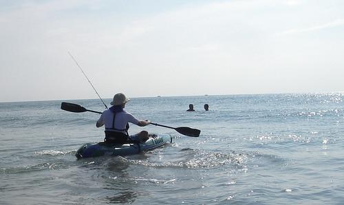 paddle3537