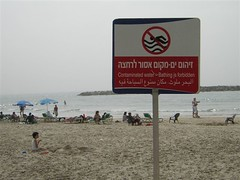 Beaches Close Due to Pollution