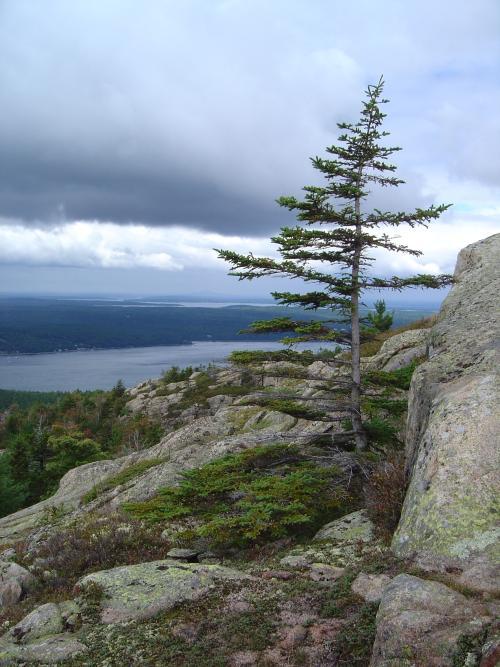 Bald Peak & Parkman Mountain