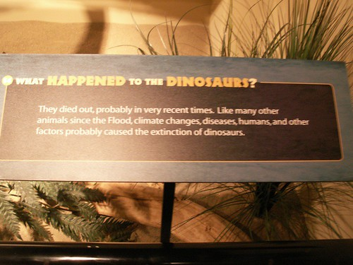 Dino facts ? 3