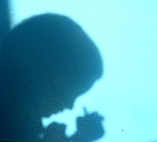 365-306 Celebrating Shadows