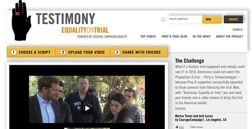 Equality on Trial website