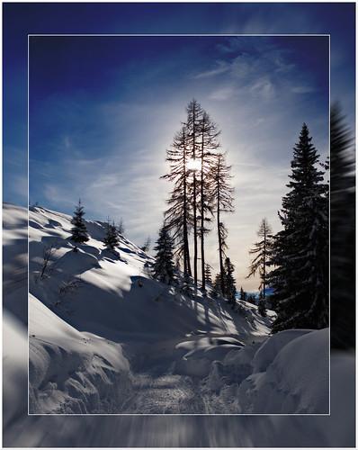 Winter scene in Blue