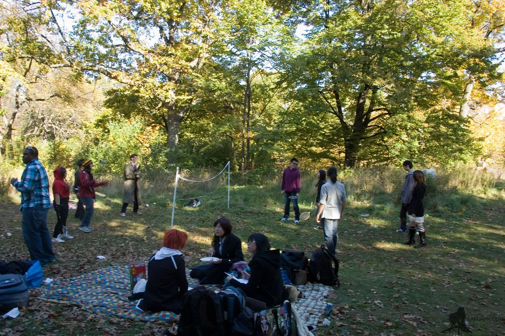 cosplay picnic high park 77