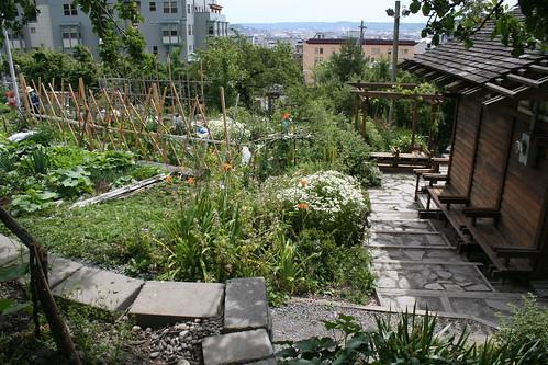 Danny Woo Community Gardens
