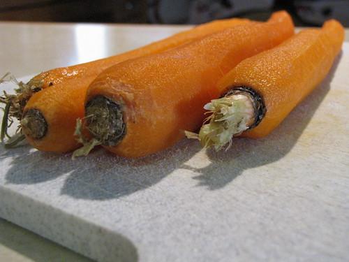315/365 Carrots