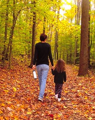 A mother and a child walk in the woods