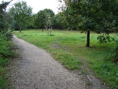 Desire path on Monken Hadley Common