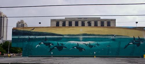 Orcas Passage