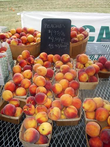 Succulent Peaches