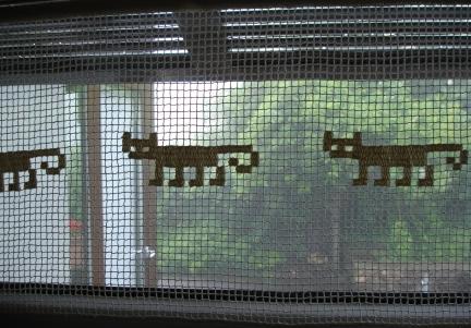 Curtain cats