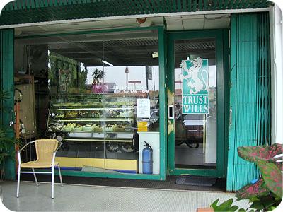 Jenni's shop