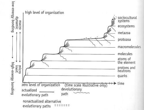 Laszlo Diagram - Levels