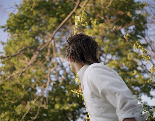 Trees_Christine Collins