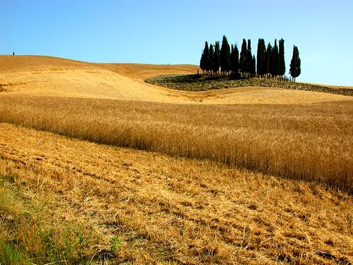 Toskana, Landschaft, Italien