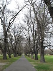 Fawkner Park, South Yarra