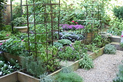 Kitchen garden at Bolen residence