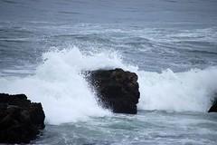 Wave Meets Rock
