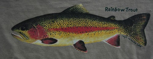Backwater Angler Rainbow Trout T-Shirt
