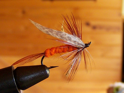 Trout fly