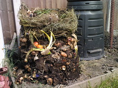 My Neglected Compost