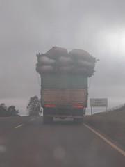 Les nombreuses camionnettes avec des sacs de maté bien calés