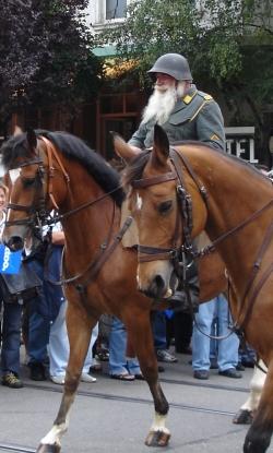 Schweizer Kavallerist