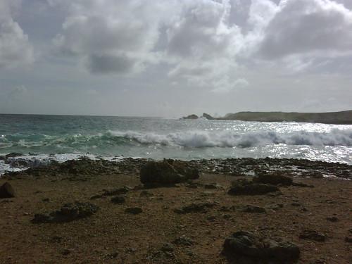 Tomas in Aruba