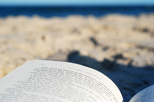 the perfect beach read