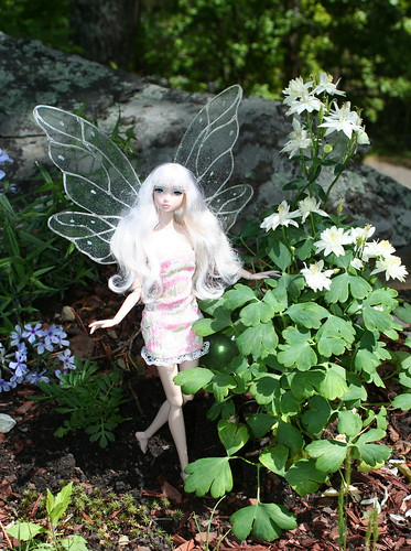 Another Faerie Dances In The Sunbeams Between The Phlox And Columbine