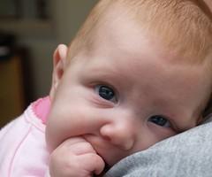 baby bentrup