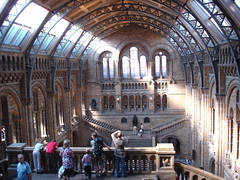 Natural History Museum (18)