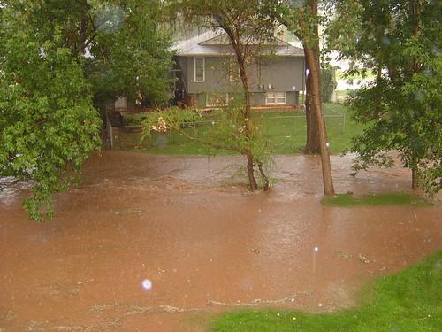 Muddy back yard