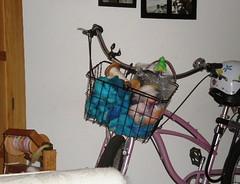 Bike is useful.